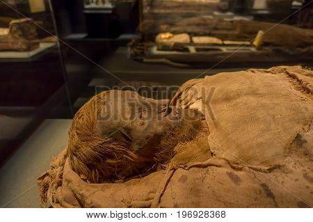 HOUSTON, USA - JANUARY 12, 2017: Close up of an amazing mummy wrapped with some rags of the Ancient Egypt in National Museum of Natural Science in Orlando Houston in USA.