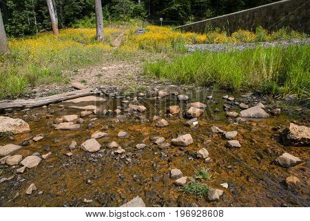 The Blue Brook at the Watchung Reservation in New Jersey
