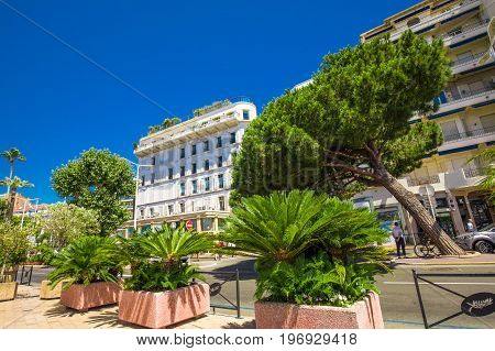 Street In Cannes City Center, France, Europe.