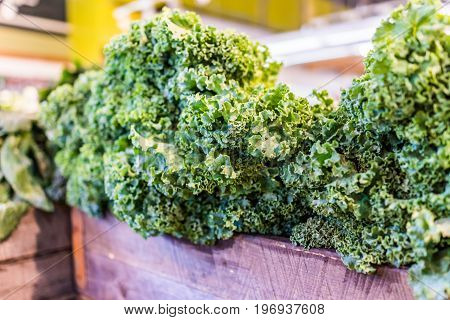 Closeup Of Kale Greens In Market Store