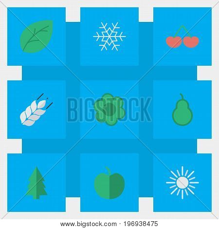 Elements Fruit, Sun, Berry And Other Synonyms Apple, Punching And Sunny.  Vector Illustration Set Of Simple Garden Icons.