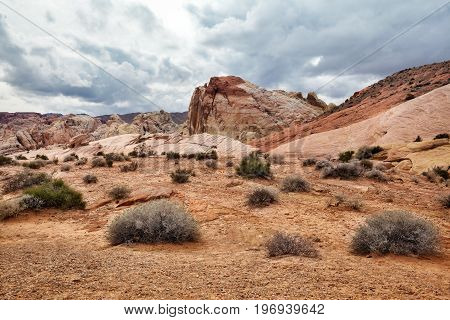 Landscape of scenic desert at Valley of Fire State Park southern Nevada USA