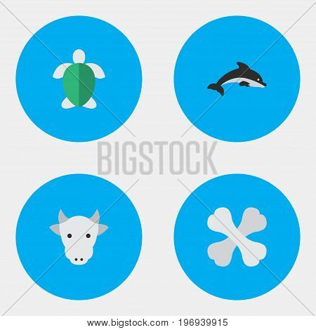 Elements Kine, Skeleton, Fish And Other Synonyms Milk, Cow And Tortoise.  Vector Illustration Set Of Simple Zoo Icons.