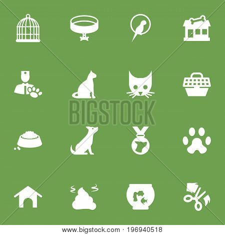 Collection Of Food, Pet Crate, Dog And Other Elements.  Set Of 16 Pets Icons Set.