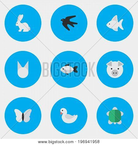 Elements Sparrow, Swan, Perch And Other Synonyms Seafood, Cat And Turtle.  Vector Illustration Set Of Simple Fauna Icons.