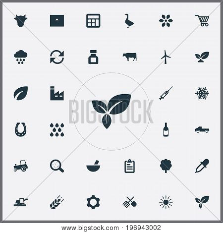 Elements Manufacture, List, Pesticide And Other Synonyms Store, Buffalo And Frost.  Vector Illustration Set Of Simple Harvest Icons.