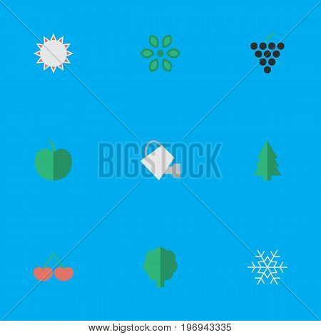 Elements Blossom, Flake Of Snow, Wood And Other Synonyms Snowflake, Apple And Grape.  Vector Illustration Set Of Simple Gardening Icons.