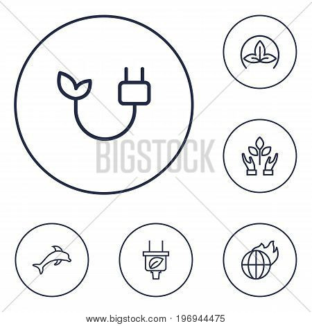 Collection Of Plug, Eco, Dolphin And Other Elements.  Set Of 6 Bio Outline Icons Set.