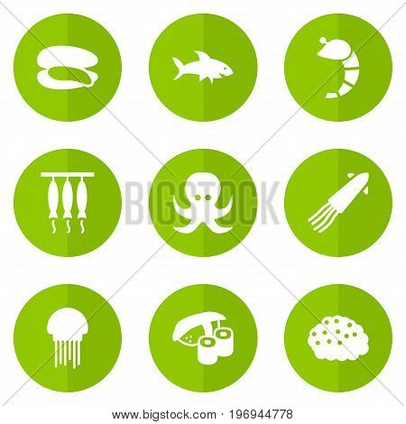 Collection Of Devilfish, Shell, Crustaceans And Other Elements.  Set Of 9 Seafood Icons Set.
