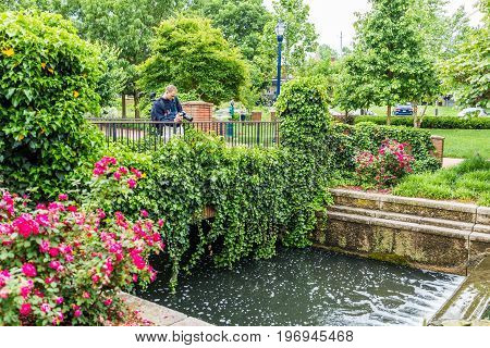 Frederick USA - May 24 2017: Carroll Creek in Maryland city park with canal and fountain waterfall and flowers in summer with photographer taking pictures