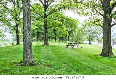 Rest Area On Road With Picnic Tables On Hill During Summer With Green Grass, Trucks And Cars
