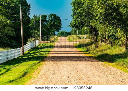 This is a scene of a dirt country road on a hot summer day.  The grass is vibrant and green from a heavy rain in the spring.