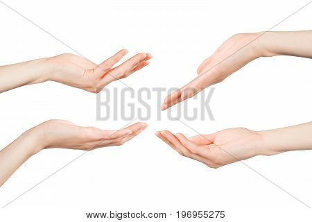 Woman hands holding showing giving or supporting something set. Isolated on white clipping path included