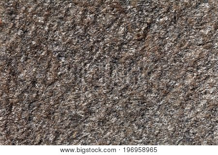 Surface of a mica rich gneiss of Paleozoic age from Germany.