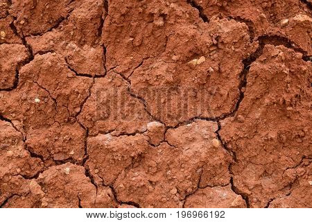 Dry cracked soil texture background. Arid red clay desert. Illustration for news about climate changes.