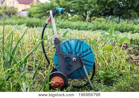An image of a garden hose on wheels. Hose for irrigation.