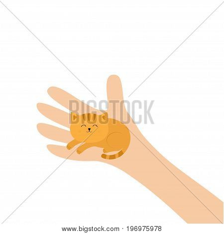 Hand arm holding orange red cat. Adopt animal pet. Helping hands concept. Funny gift. Cute cartoon character. Close up body part. Flat design style. White background. Isolated. Vector illustration