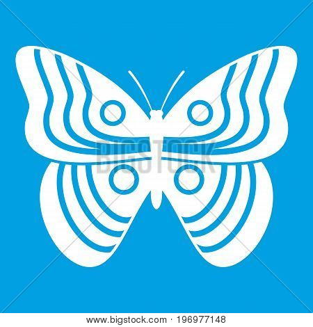 Stripped butterfly icon white isolated on blue background vector illustration