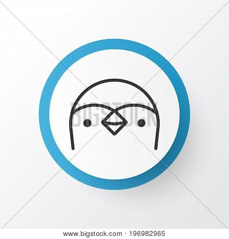 Premium Quality Isolated Diver Element In Trendy Style.  Penguin Icon Symbol.