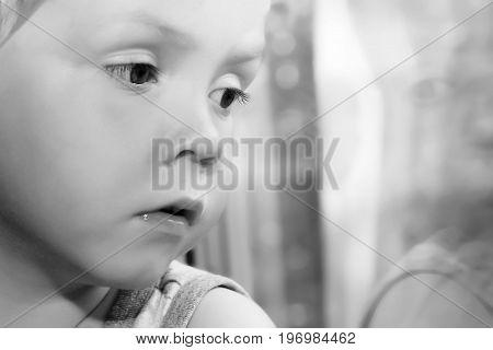Adorable Little Blond Kid Boy Sitting Near Window, Baby