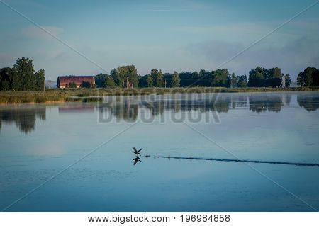 Lithuanian Rural Scenery In The Morning