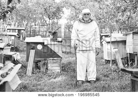 Black and white monochrome shot of an elderly man wearing beekeeping suit standing near beehives at his apiary lifestyle hobby profession farmer farming concept.
