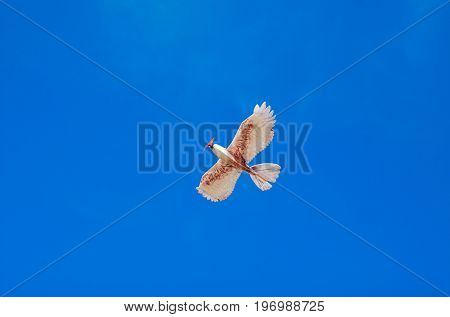 Model of bird flying in a magnificent blue sky