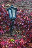 Old lantern on a fortress wall surrounded with red leaves in autumn at Kalemegdan, Belgrade, Serbia poster