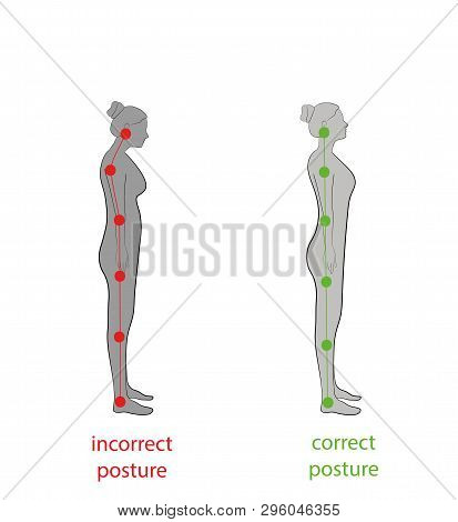 Correct Alignment Of Human Body In Standing Posture For Good Personality And Healthy Of Spine And Bo