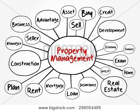 Property Management Mind Map Flowchart, Business Concept For Presentations And Reports