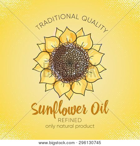 Label Design Template For Refined Sunflower Oil. Sketch Illustration With Handdrawn Sunflowers On Ye