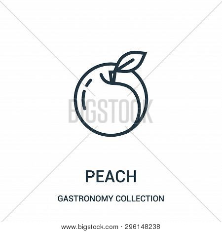 Peach Icon Isolated On White Background From Gastronomy Collection. Peach Icon Trendy And Modern Pea