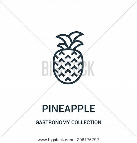 Pineapple Icon Isolated On White Background From Gastronomy Collection. Pineapple Icon Trendy And Mo