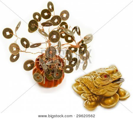 Chinese Feng Shui Frog with coins and money tree