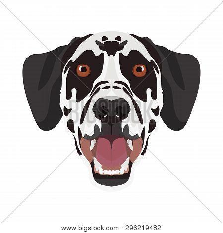 Illustration Dalmatian