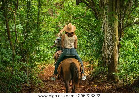 Horse Ride Through Jungle In Vacation. Horse Ride In Jungle Nature. Green Jungle Nature. Vacation. N
