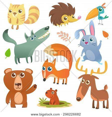 Cartoon Forest Animal Characters. Wild Cartoon Cute Animals Set. Big Set Of Cartoon Forest Animals F