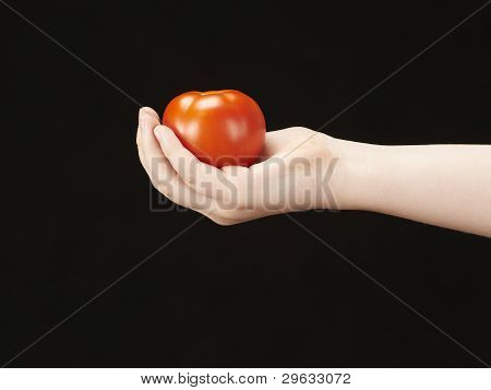 Childs hand with tomatoe and palm facing up