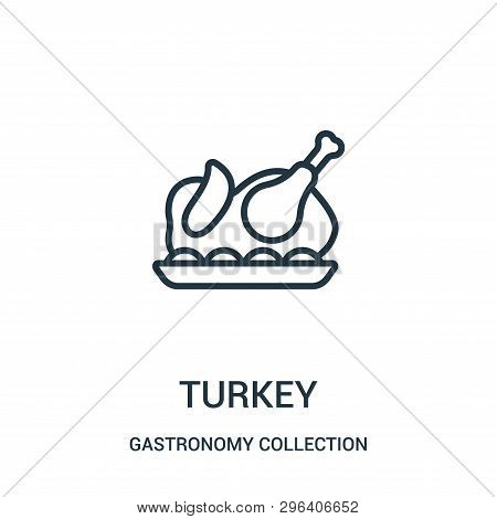 Turkey Icon Isolated On White Background From Gastronomy Collection. Turkey Icon Trendy And Modern T