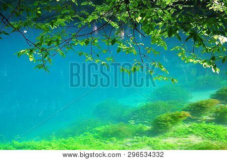 Turquoise Water Of Blautopf, Karstic Spring Of River Blau In Blaubeuren, Germany, Swabian Alb