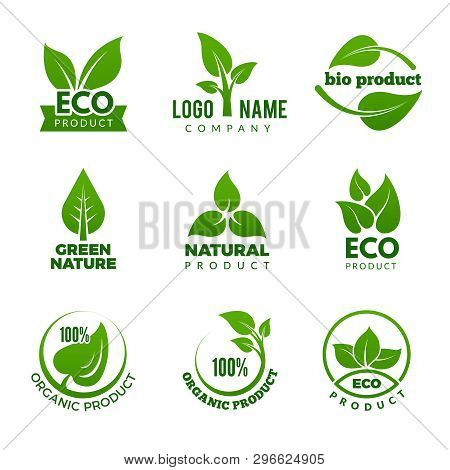 Nature Logo. Herbal Organic Eco Natural Health Design With Vector Leaf. Illustration Of Natural Gree