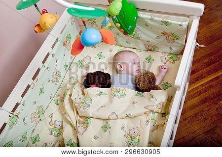 Babys Restful Sleep. Newborn Baby In A Wooden Crib. The Baby Sleeps In The Bedside Cradle. Safe Livi