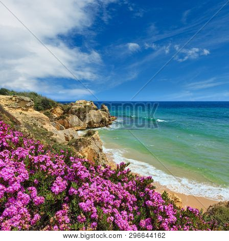 Summer Blossoming Atlantic Rocky Coast View With Purple Flowers And Narrow Sandy Beach, Albufeira Ou
