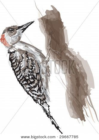 Red bellied Woodpecker abstract illustration, abstract tree poster