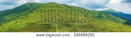 Beautiful Summer Landscape In Mountains. Grassy Alpine Meadows On An Overcast Day. Path Uphill