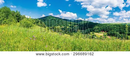 Panorama Of Mountainous Countryside In Summer.  Rural Fields On Grassy Hills. Wild Herbs On The Mead