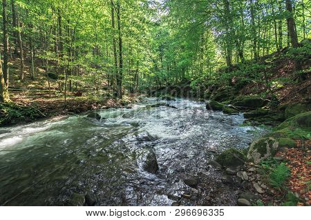 Rapid River In The Ancient Beech Forest. Beautiful Summer Nature Scenery. Creek With Huge Mossy Boul