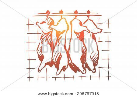Abattoir, Meat Cutting, Chopped Pork, Cattle Carcasses Hanging In Freezer, Refrigerator, Raw, Uncook