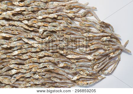 Small dried fish from sea that are arranged tidy on white paper with copy space for design,top view of small dried fish pattern poster