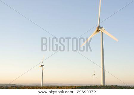 Three Wind Turbines At Dawn, Uk.